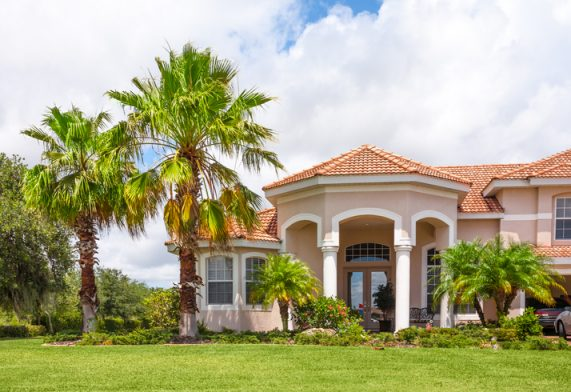 New Home with Palm Trees and Tropical Foliage