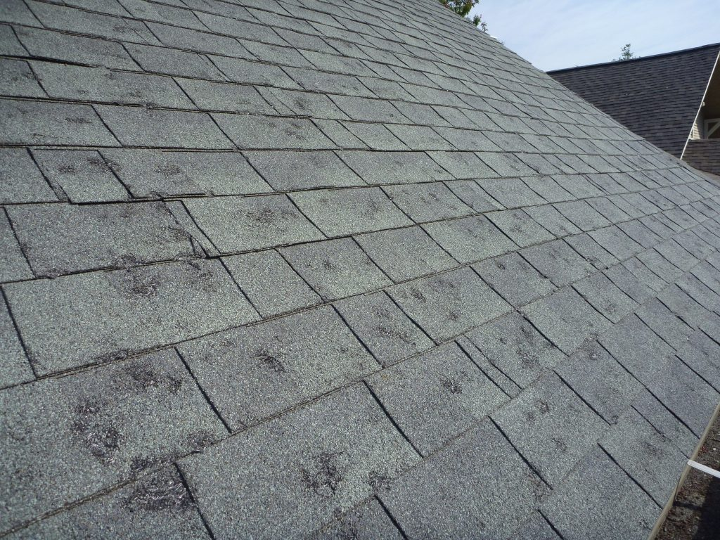 Signs of Hail Damage on Your Roof (How to Tell)   Roof Maxx
