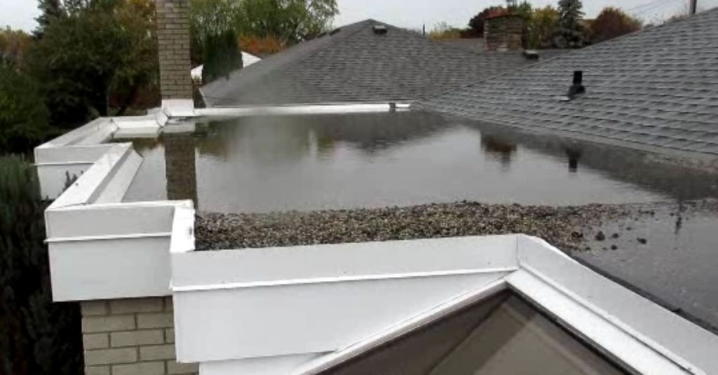 puddle of standing water on roof.