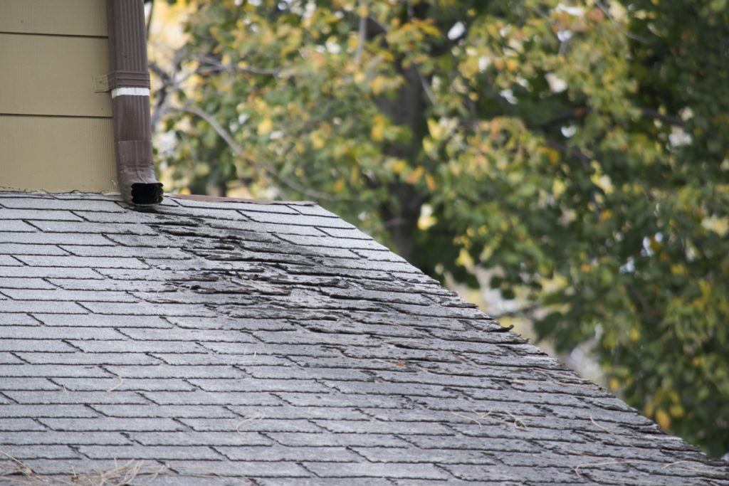 10 Most Common Causes for Roof Leaks | Roof Maxx | Roof Maxx