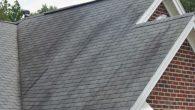 streaks of roof algae on asphalt roof.